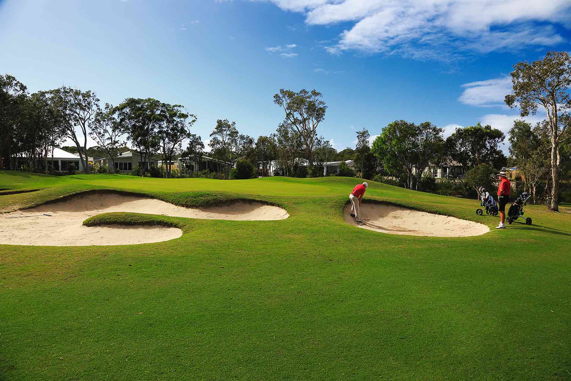 peregian springs golf course review