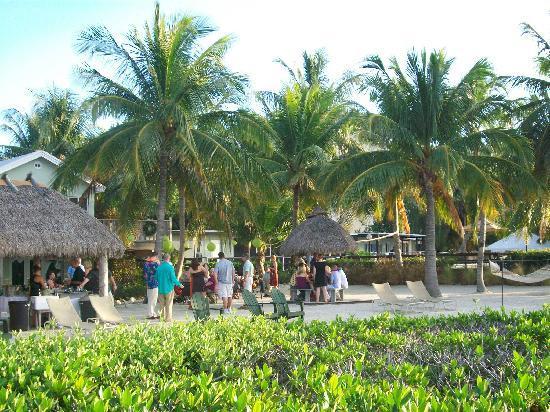 coconut palm inn key largo reviews
