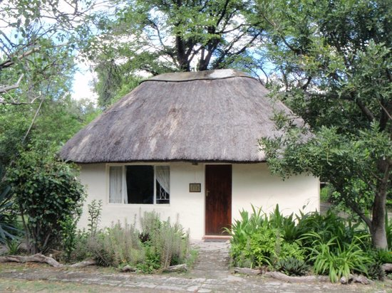 island safari lodge maun reviews