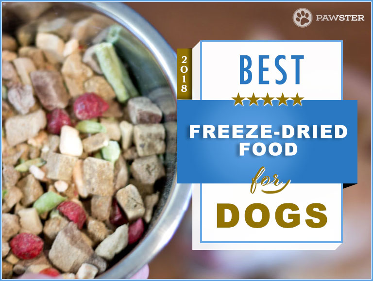 best freeze dried food reviews