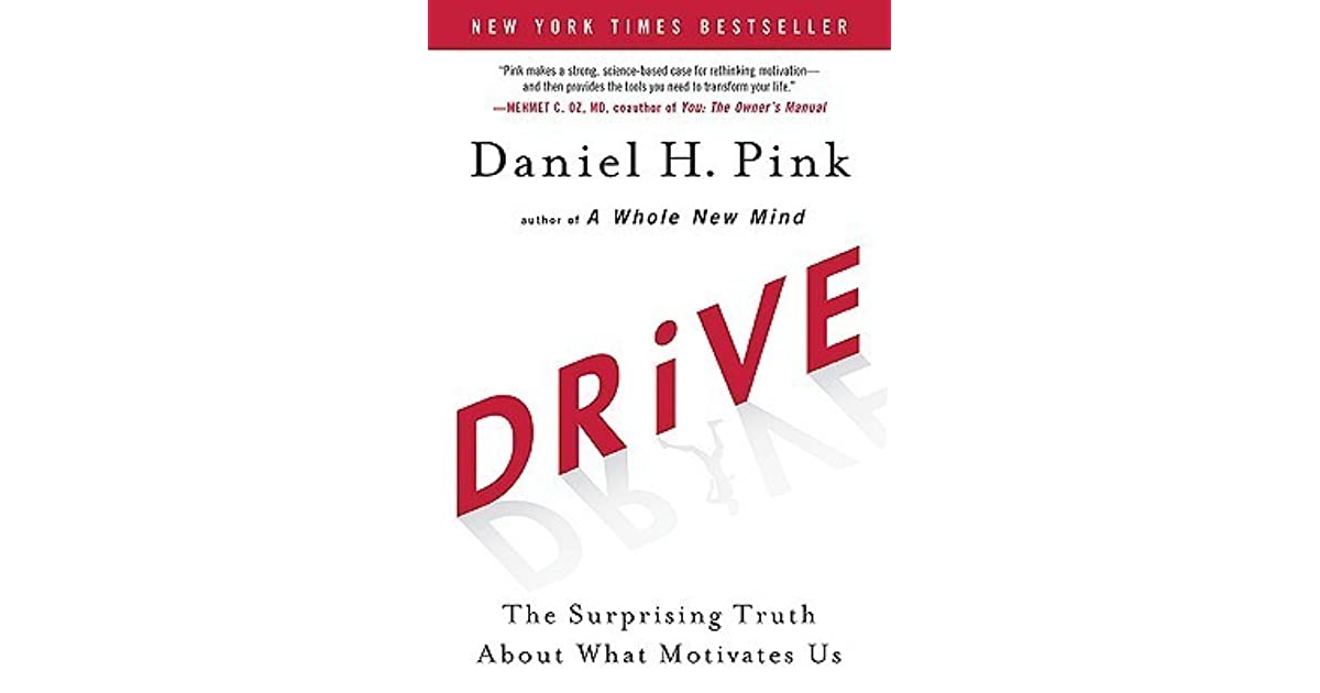 drive the surprising truth about what motivates us review