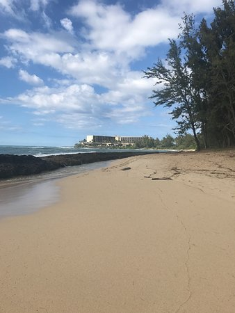 turtle bay resort oahu reviews